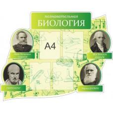 Оформление кабинета Биологии №11