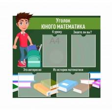 Оформление кабинета Математики №48
