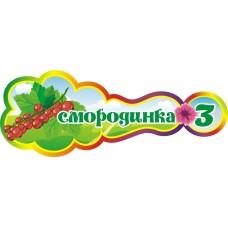 Оформление группы Смородинка №8