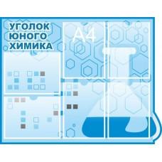 Оформление кабинета Химии №4